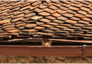 6 Tell-Tale Signs that You Need a New Roof