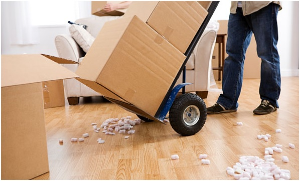 Reasons Why You Must Hire A Professional Furniture Removalist In Australia