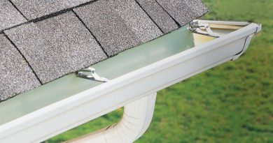 Why You Should Clean Your Gutters