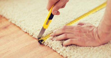 What Every Homeowner Needs To Know About Carpet Removal and Replacement